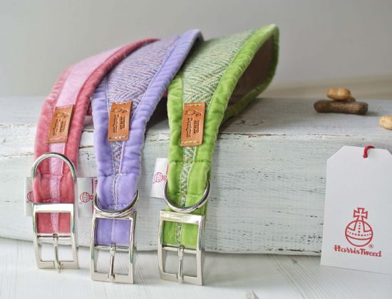 Sighthound Collars